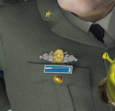 Shrek's Head (Comparison)