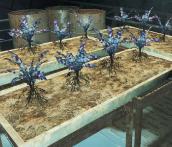 Nirnroot (Experimental Plant)